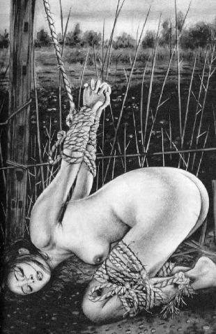 BDSM Bondage d'été AURORAWEBLOG.