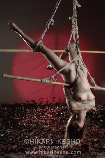BDSM Bondage Hikari Kesho Shibari pour Hannah AURORAWEBLOG.