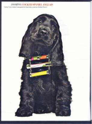 BDSM? Collier Pucci sur chienne Marie-Claire septembre 2008.