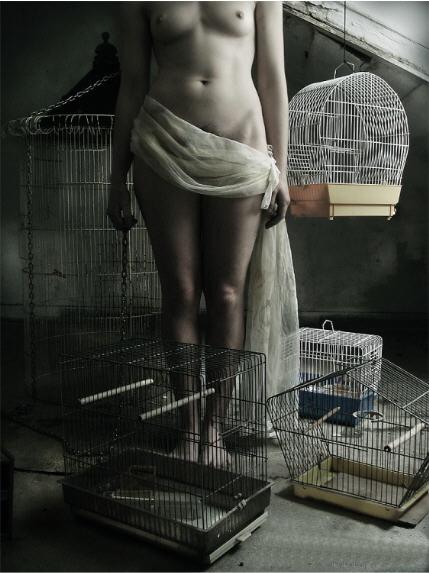Les cages, photo de Fernando Figueiredo et Maria Flores.