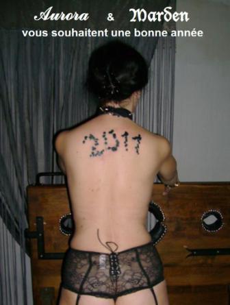 AURORAWEBLOG Bonne Année 2011