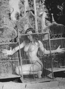 BDSM cage AURORAWEBLOG